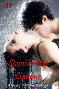 Spontaneous Liaisons - Multiple Author Anthology
